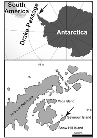 A map of Seymour Island in relation to the Antarctic and the Drake Passage.